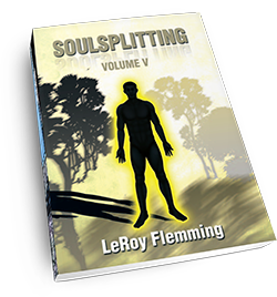 Soulsplitting Volume 5